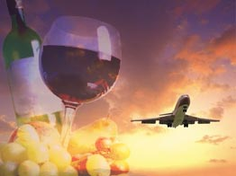 About Us - Aviation Services Network